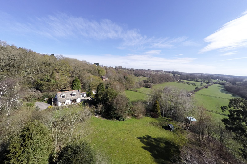 New Forest Equestrian Properties