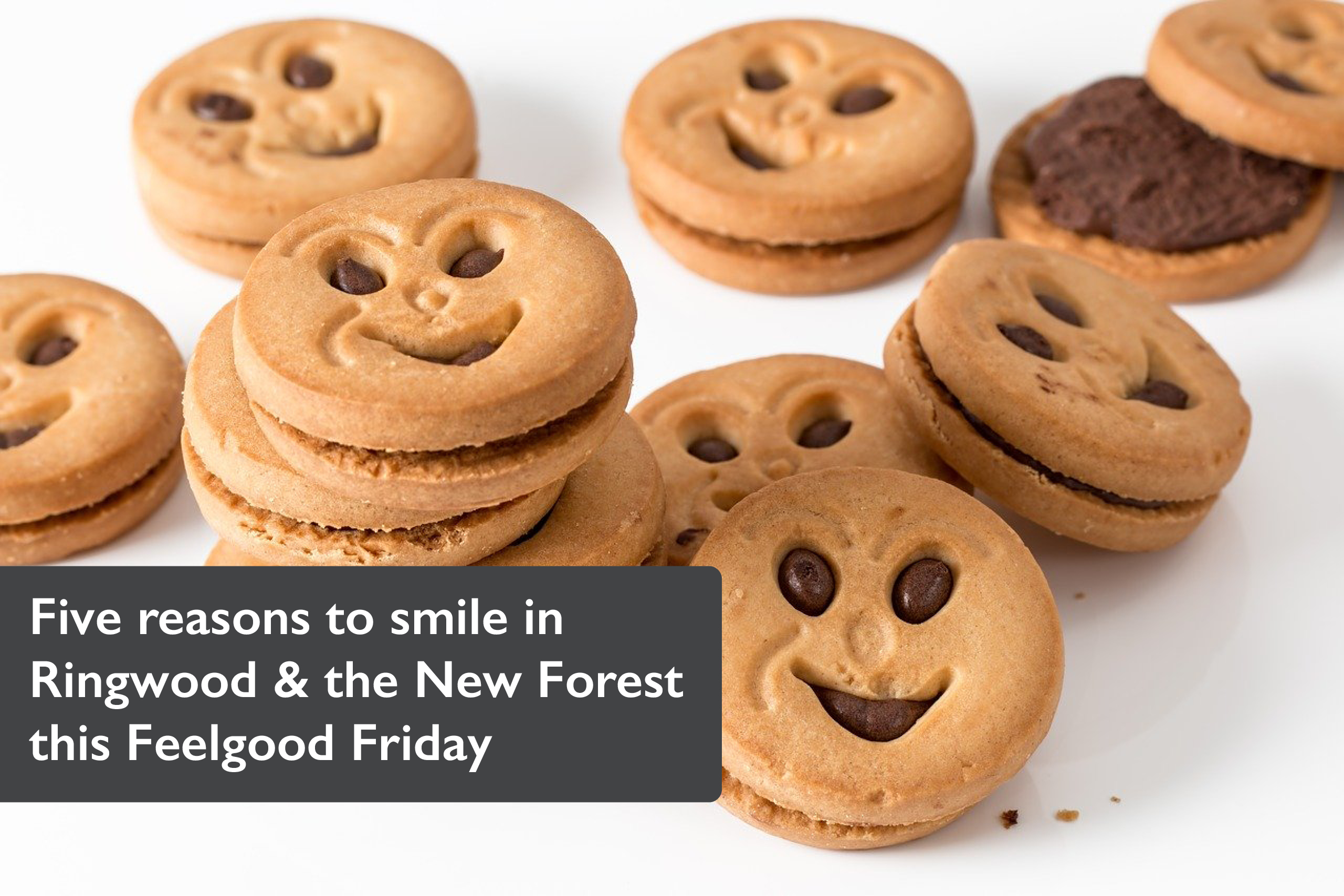 Five reasons to smile in Ringwood & the New Forest this Feelgood Friday
